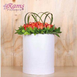 Rams Flowers RF414